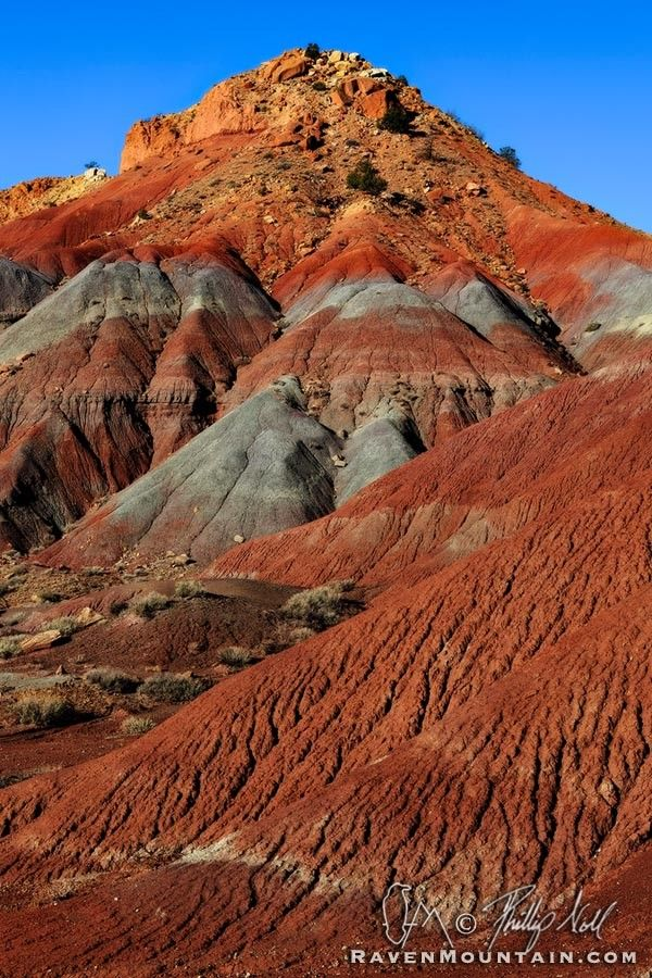 New Mexico red beds are sedimentary rocks, usually sandstones, siltstones, or shales, that are stained various shades of red and orange