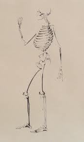 skeleton drawing - Google Search