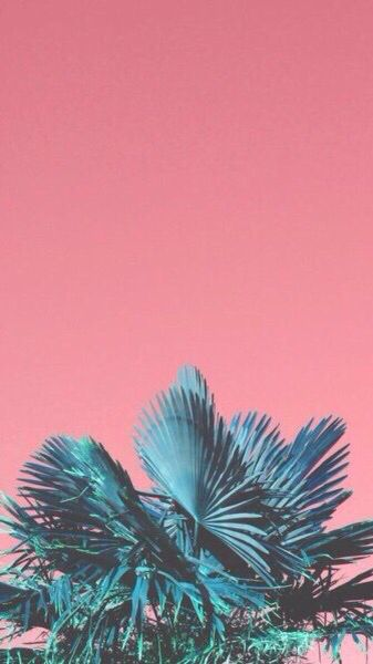 Tumblr Plant Wallpaper Art Iphone Wallpaper Wallpaper