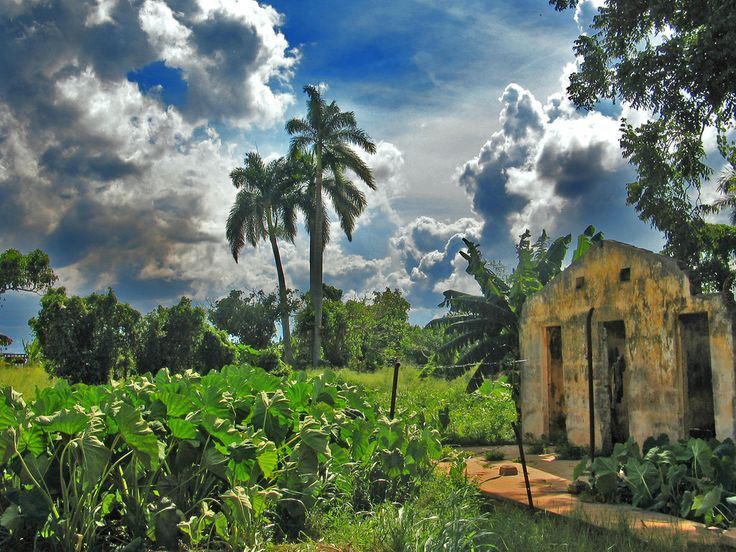 Cuba - I rented a car and drove out to the rural area in Cuba and got to see this!