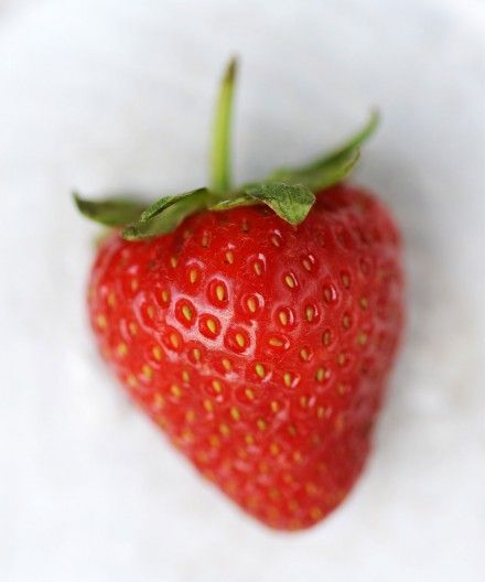 """Simple, summery and full of fruit, this recipe is easy to pull together making use of British strawberries that are plentiful and packed with flavour at this time of year. <a class=""""read-more"""" href=""""http://brasserieblanc.com/recipes-tips/strawberry-fool-2/"""">read more</a>"""