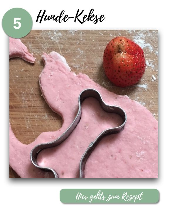 Hunde-Snacks selber machen // 5 einfache Rezepte mit Erdbeeren // Hundekekse
