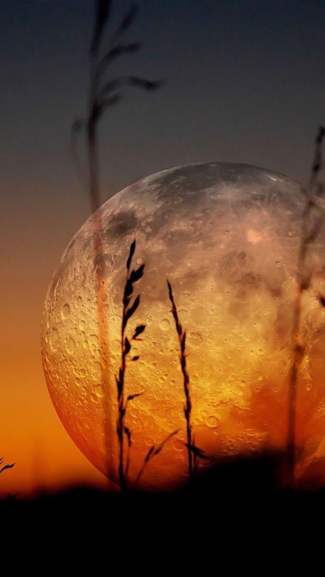 Awesome views: Full orange moon