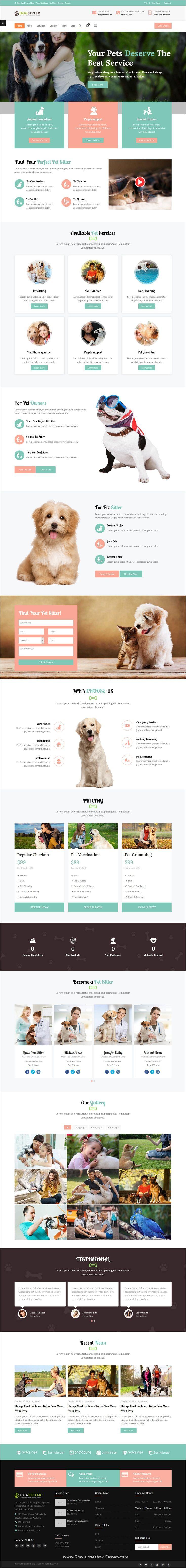 Dog Sitter Html Webデザイン 動物 病院