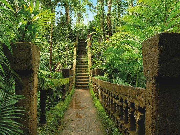 Paronella Park in Tropical North Queensland.