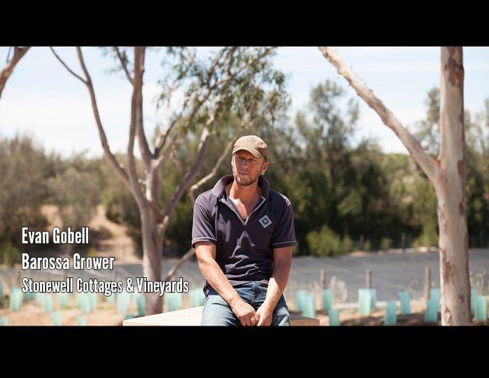 Barossa Environmental Champions - Evan Gobell on Vimeo