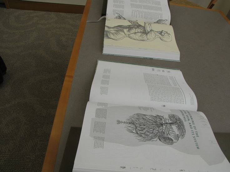 New edition of Andreas Vesalius' De Humani Corporis Frabrica. On November 19, 2014 #CUHSLibrary celebrated the 500th Anniversary of Andreas Vesalius' Birth.