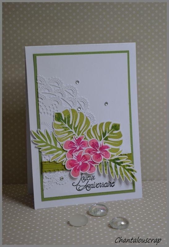 Joyeux Anniversaire Paulette A Tropical Chic Cards