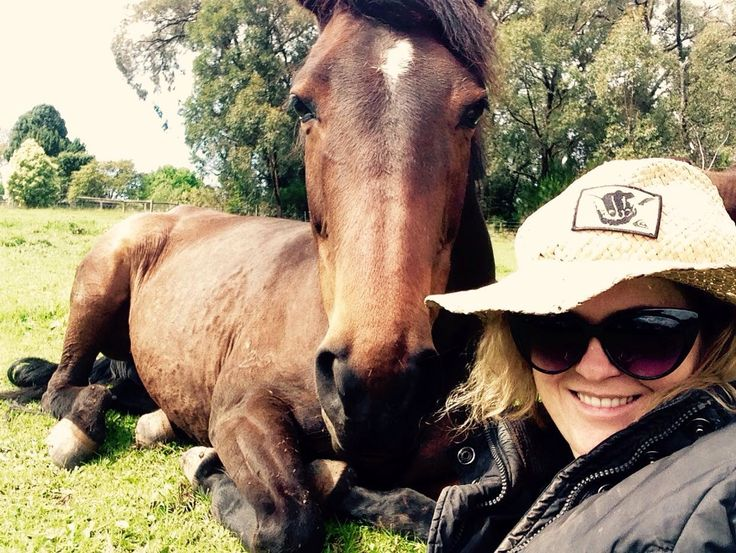 Beautiful Nellie another rescue mare, loving life now with her new friends