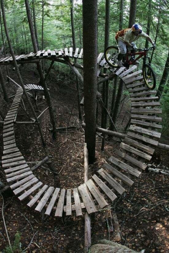 mountain bike plank bridge through the woods