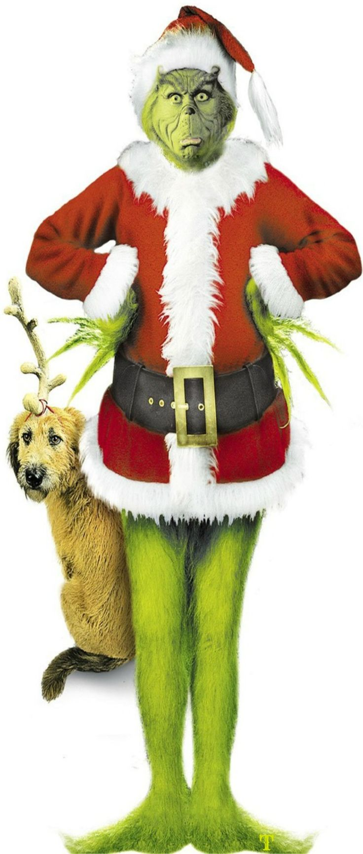 How to make your own grinch costume - How The Who Grinch Stole Christmas