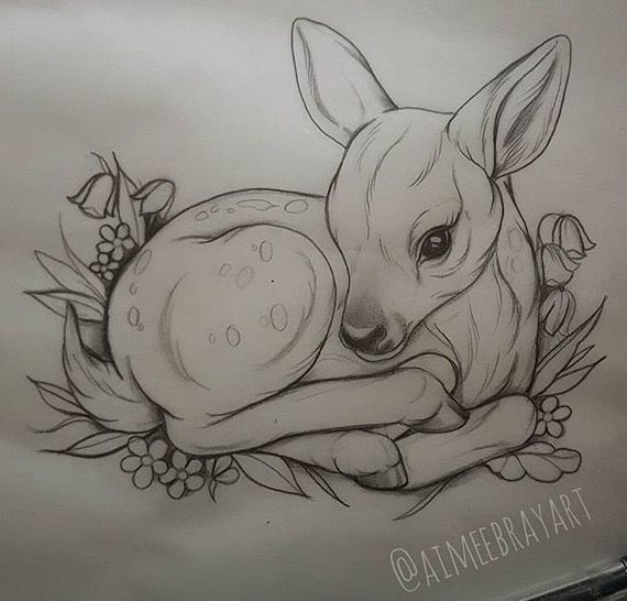 Fawn Sketch Inkpaintingdiy Rehkitz Skizze Rehki Artsketches Animal Drawings Sketches Animal Drawings Drawings