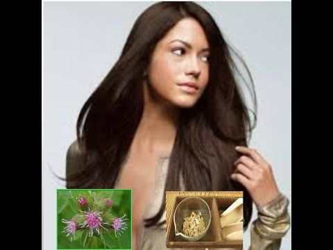 8 Amazing Benefits Of Burdock  For Skin,Hair And Health