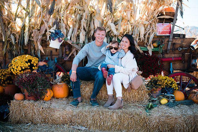 Denver pumpkin patch...