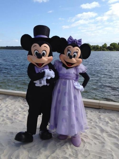 17 Best Images About Sustainable Stormwater Management On: Mickey & Minnie On Pinterest