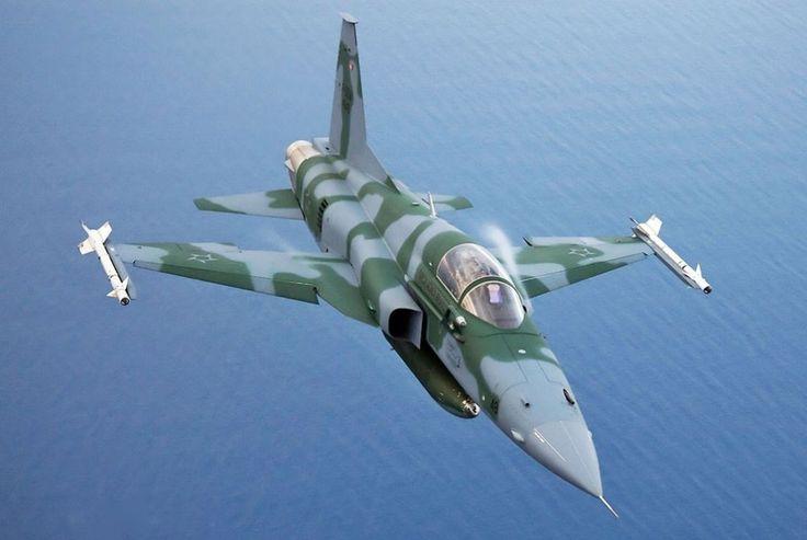 O caça supersônico F-5 é o principal meio de interceptação do Brasil (FAB)