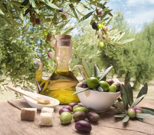 15 best Olive Green images on Pinterest | Olive green, Olives and ...