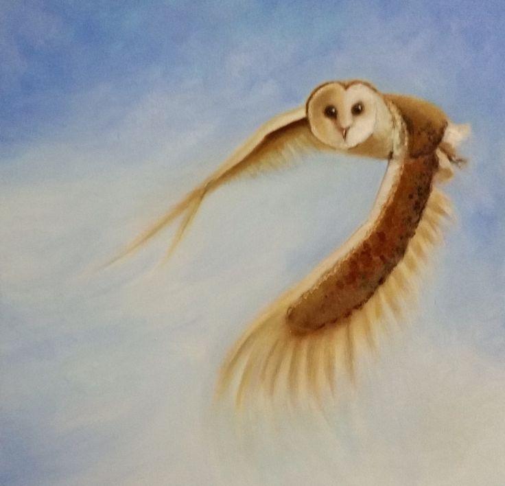 Flying barnowl