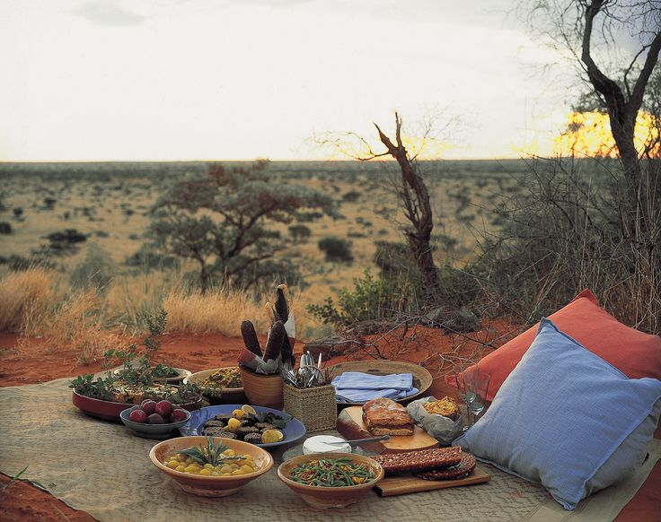 For an action-packed romance, try Motse Lodge on the edge of the #Kalahari. From bush walks to horseback safaris, discover the red sands of the desert between relaxation in the Sanctuary Spa. #Africa #romance #proposal
