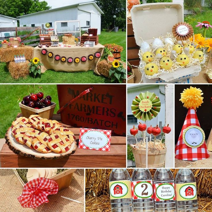 Picnic Basket Lakeland : Images about southern charm picnics on