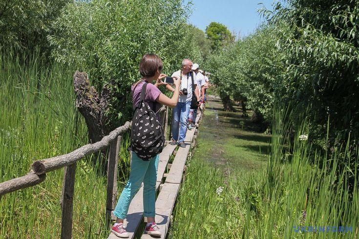 The new eco-park in the Odessa region will be amazed by water buffaloes./ Новий екопарк на Одещині дивуватиме водяними буйволами #buffaloes #ecopark #Odessa #zoo #ukraine #ukrinformphoto #буйвол #Одеса #Україна #екопарк #зоопарк  https://www.ukrinform.ua/rubric-tourism/2257677-novij-ekopark-na-odesini-divuvatime-vodanimi-bujvolami.html