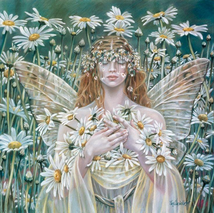 Sheila Wolk - fairies Photo