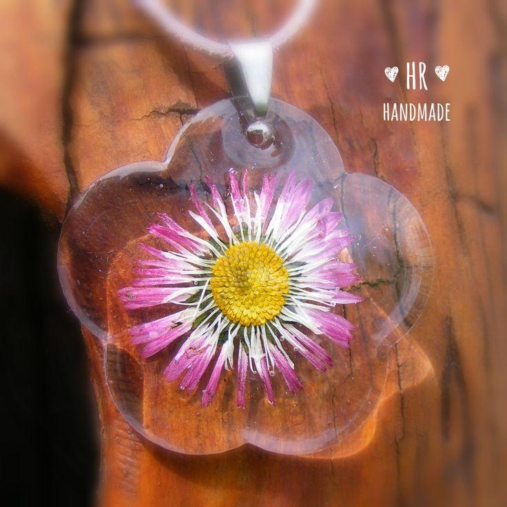 Százszorszép virág
