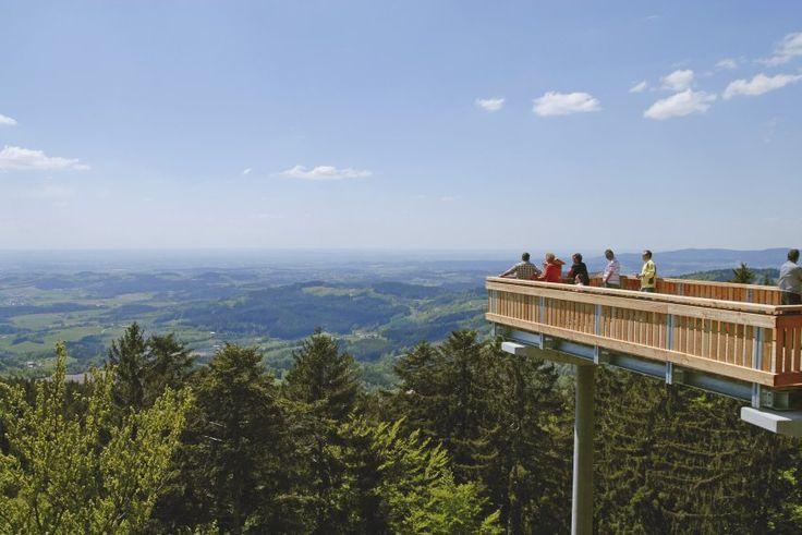 Die Besucher des Waldwipfelwegs in St. Englmar haben den Bayerischen Wald und...