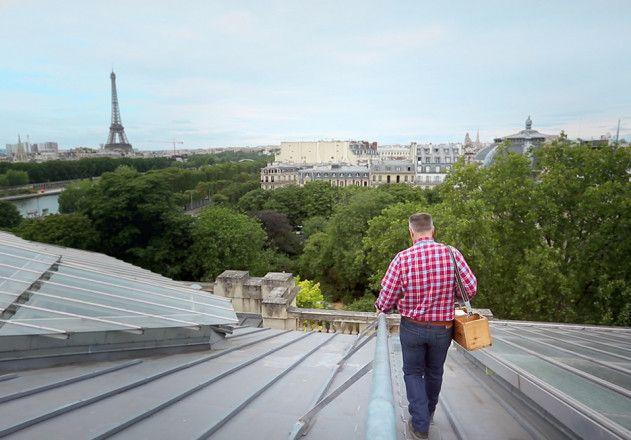 Dachlandschaft Paris Grand Palais