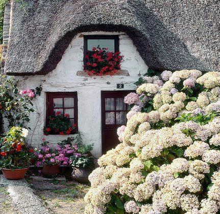 English Country Cottage... hygrangeas obligatory ;)