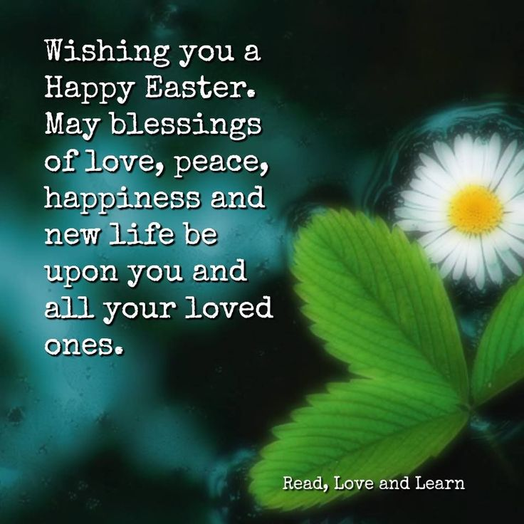 Wishing You A Happy Easter easter easter quotes easter images easter quote happy easter happy easter. easter pictures funny easter quotes easter blessings happy easter quotes quotes for easter easter quotes for friends and family easter quotes for facebook