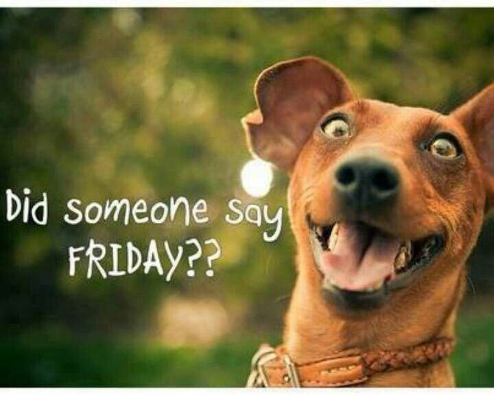 1000+ Ideas About Happy Friday On Pinterest