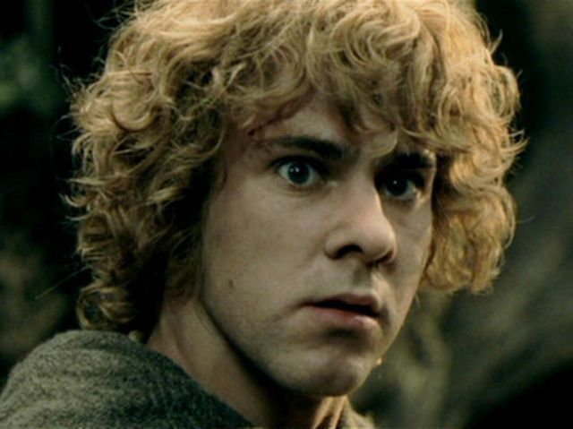 Merry Brandybuck or Pippin Took? - Lord of the Rings - Fanpop