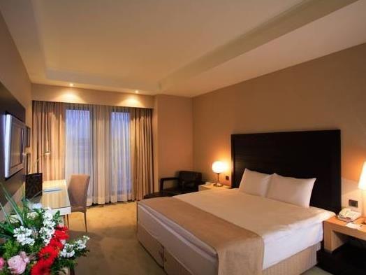 Holiday Inn Istanbul Airport Hotel Istanbul, Turkey