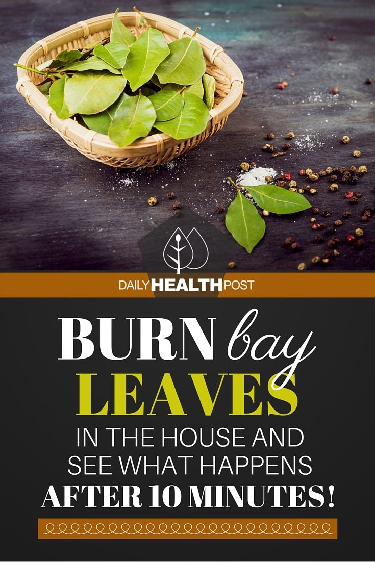 f you've ever stepped inside a yoga studio or new age book shop, you may have noticed that these places sometimes have a very particular smell.    This is because many of these locations regularly practice smudging (1), a Native American tradition that uses the smoke of sacred herbs to purify a room. This ritual is similar to the act of burning incense.   https://dailyhealthpost.com/burn-bay-leaves/