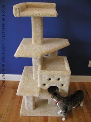 1000 ideas about cat tree plans on pinterest cat for Build your own cat scratch tower