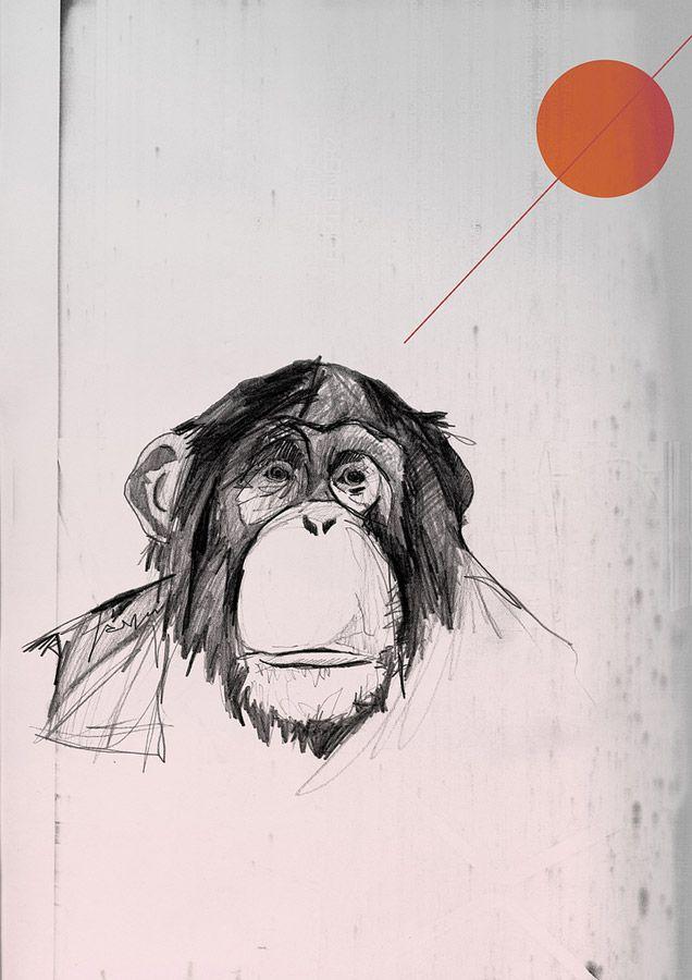 Monkey and shapes