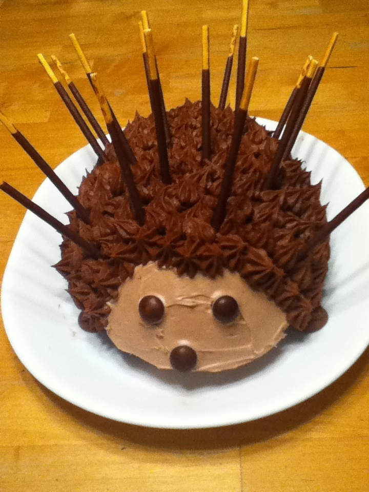 """My son dared me to make a Porcupine cake - and this is what I made.  He calls it the """"Pockey-pine"""" because the quills are Japanese pockey (chocolate dipped sticks).  I love a challenge!"""