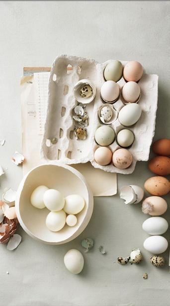 eggs eggs wonderful eggs; colorconcept +styling: dietlind wolf; photo: thomas neckermann; food : marie-louise barchfeld; in print : brigitte woman issue 04/2013