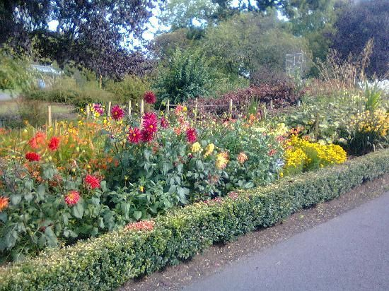National Botanical Gardens In Dublin Ranked #9 Out Of 608 Of Things To Do In
