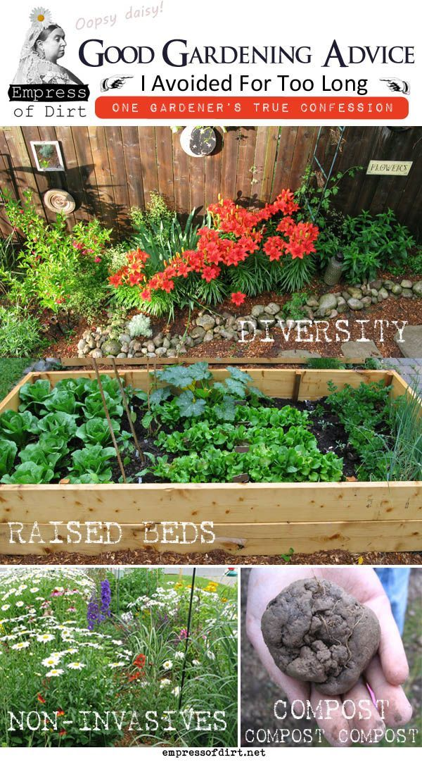 4 basic things to know when you're starting a garden to avoid regrets later