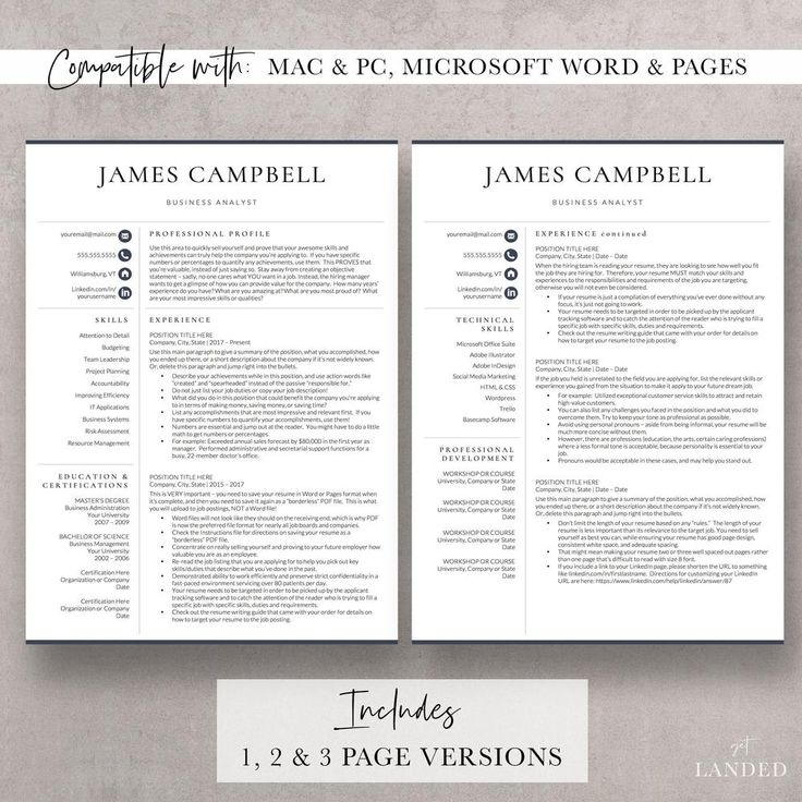 Executive resume template corporate resume the campbell