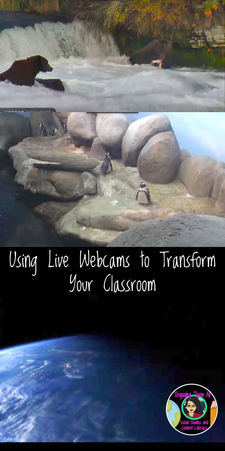 Technology Tips for Teachers: Using Live Webcam to Transform You Classroom
