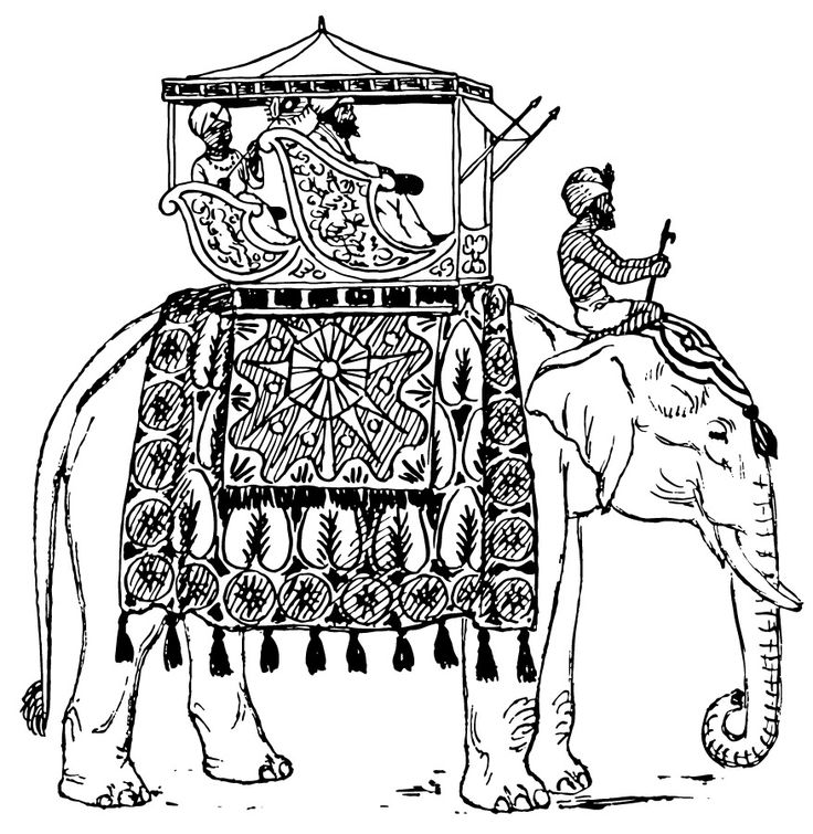 indian elephants coloring pages