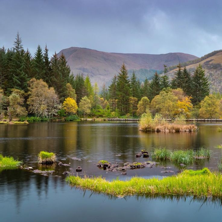 Green scenery at Glencoe Lochan in Glencoe, Scotland