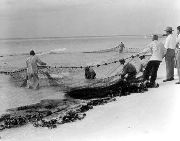 Mullet net fishing 1852 florida pensacola for Mullet fish florida