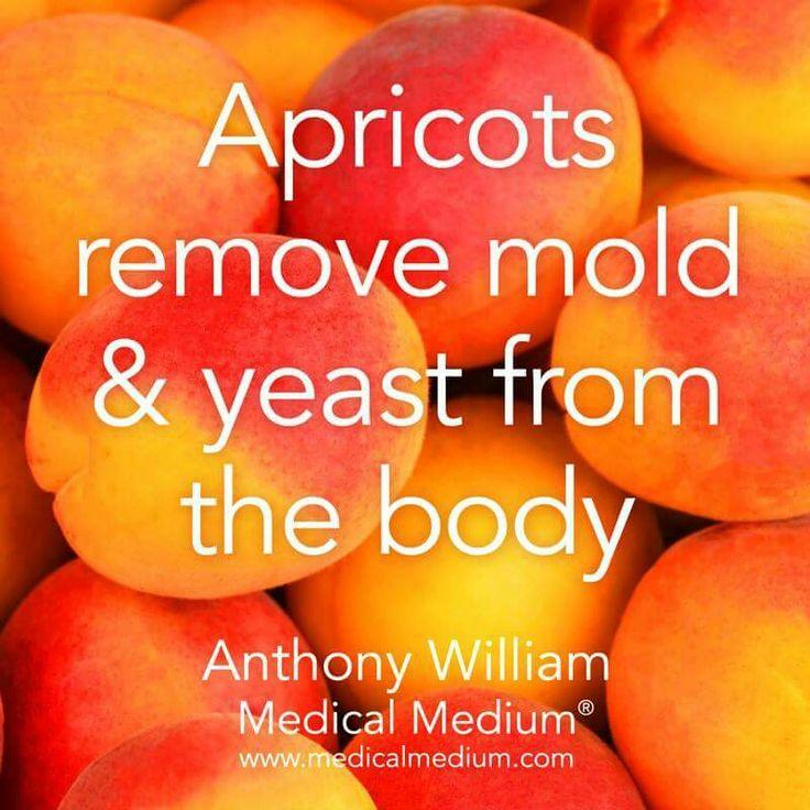 Apricot Benefits
