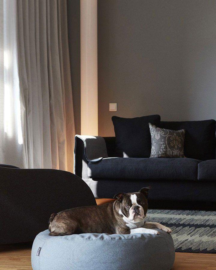 Hundepude (Scala) - Tundra - Petlux