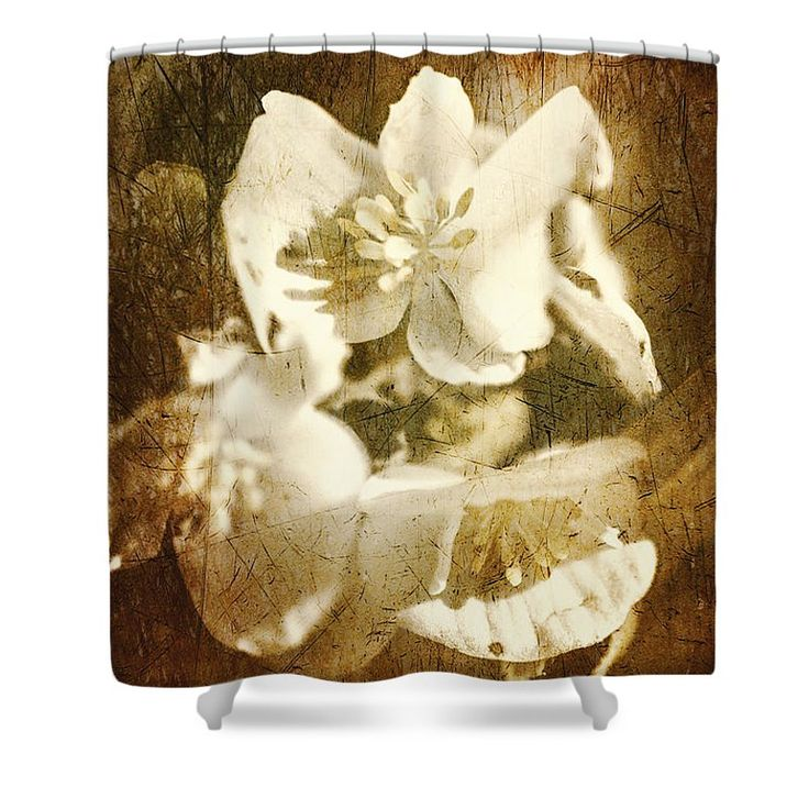 Vintage Shower Curtain featuring the photograph Past Life Flowers by Jorgo Photography - Wall Art Gallery