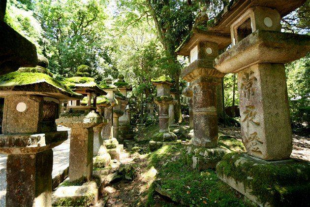 NARA, jelene a tisíc lucerien, Japan  Víte, jak se jmenovala první japonská metropole? Správně hádáte, Tokio to nebylo. Ani starobylé Kjóto, které vládlo ostrovu dlouhých deset století. Prvním hlavním městem byla totiž Nara, která vznikla v roce 710. A za 1300 let se zdejší nádherné dřevěné chrámy téměř nezměnily.